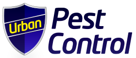 Urban Pest Control for Pest Control in Poole, Bournemouth & Dorset